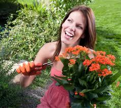 заработать в саду