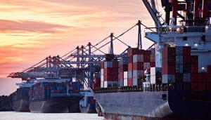 импорт экспорт бизнес